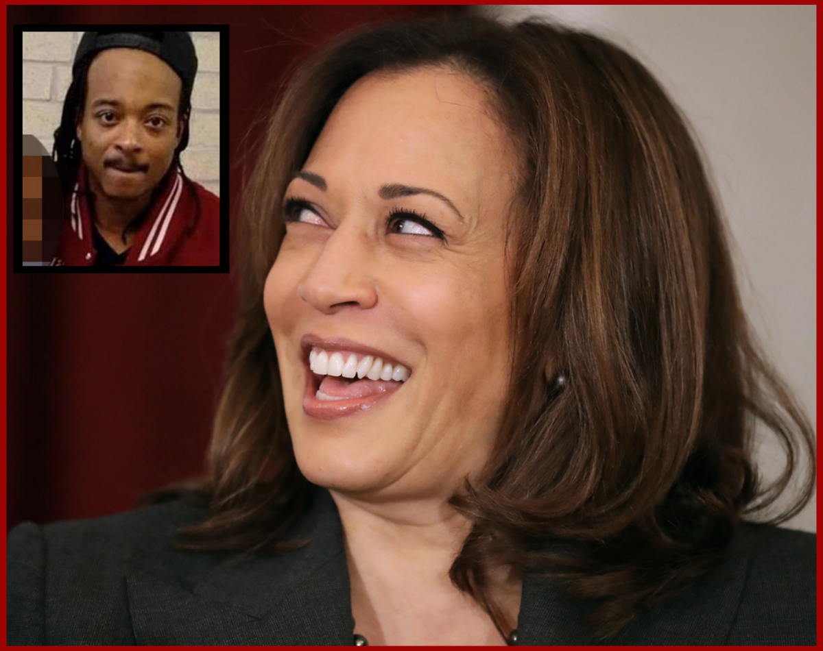 Kamala Harris Told Jacob Blake She Was 'Proud' of Him; Megyn Kelly slams Harris for being proud of 'sex offender'